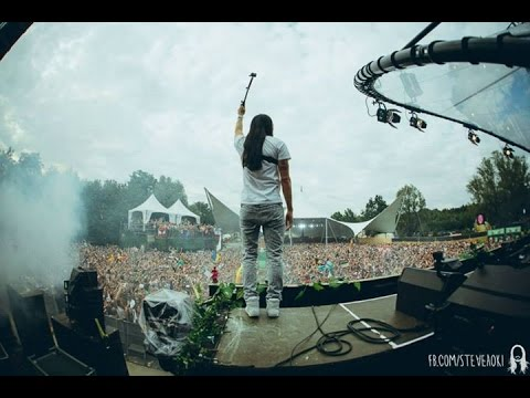 Steve Aoki Live At Tomorrowland 2014 - Dim Mak Stage Set