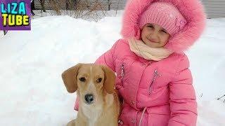 Смешной Щенок ловит и ест снег Лиза и щенок Таффи играют в снежки на свежем воздухе LizaTube