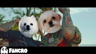 Pedro Capo - Farruko - Calma Cover Perros (Official Video)