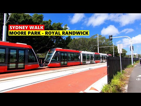 Sydney Walk - SYDNEY LIGHT RAIL Moore Park To Royal Randwick Tram Stop |  Sydney Australia