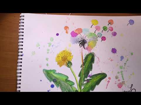 How to Draw a dandelion, using watercolors