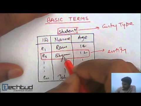 Entity Entity Type Entity Set Database Management