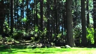 Kitsap Memorial Group Camp Site