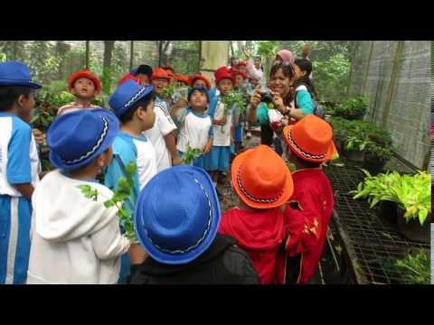 Students are trained to plant