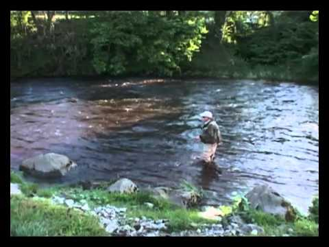 Fly Fishing On The River Wharfe In The Yorkshire Dales