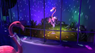 Flamingo Love - Vancouver Film School (VFS)