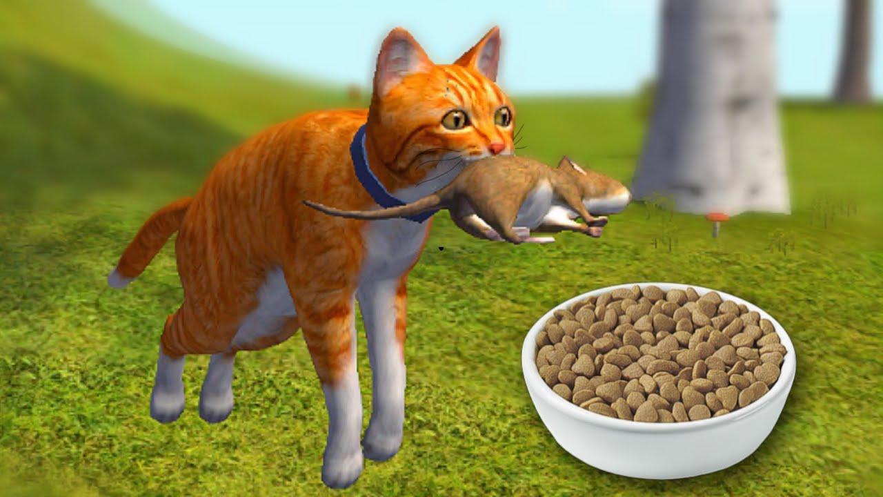 Vida de Gato na Fazenda: LEVEI Ratos Para meu Dono! Ele Gostou? (Cat Simulator)