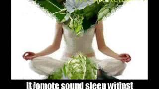 5 Natural Cure For Sleep Apnea