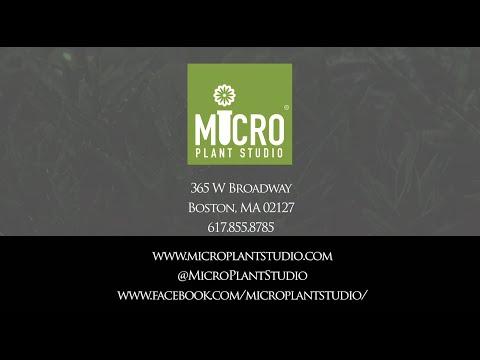 Micro Plant Promo Video