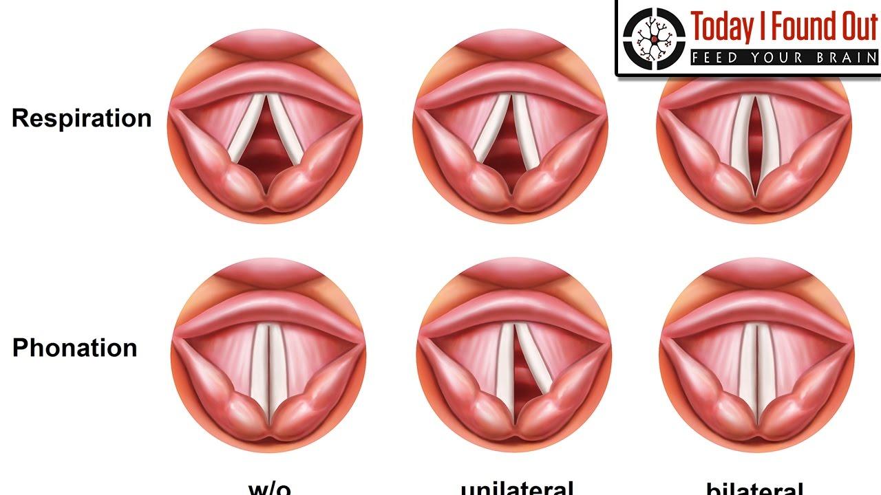 does masturbation change your voice