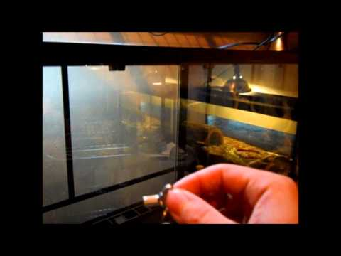 National Geographic Reptile Sanctuary 36x18x24 Review Youtube