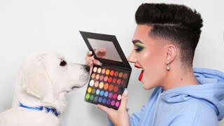 Download Puppy Picks My Makeup! Mp3 and Videos