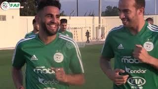 بالفيديو.. الخضر يجرون أول حصة تد - الشباك الرياضي