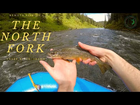 Fishing The North Fork | Remote Trout Fishing In Idaho From A Raft