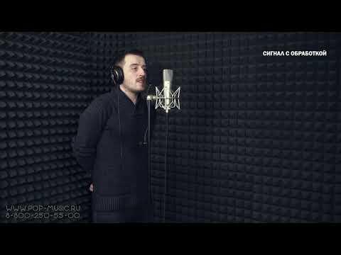 Студийный микрофон Warm Audio WA 87