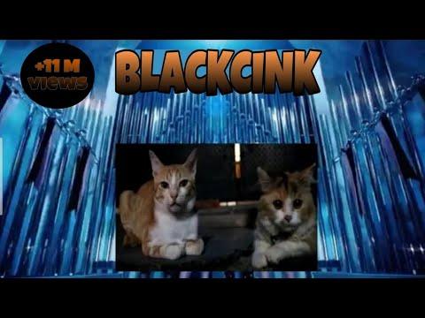 BLACKPINK - 'Kill this love' M/V || Parodi by cat #Lui #blackpink