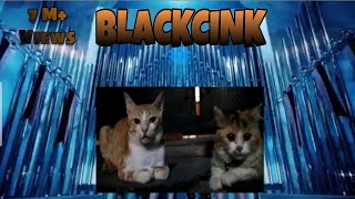 BLACKPINK - 'Kill this love' M/V    Parodi by cat #Lui