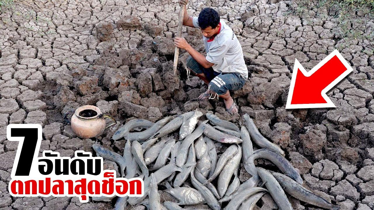 7 ตกปลาสุดช็อกและโคตรระทึก!! ที่น้อยคนจะเคยเจอ (เกิดขึ้นได้ไง)