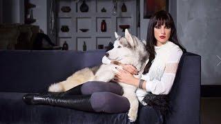 النشرة الفنية وفيها .. صور درة التونسية وكلبها تثير الجدل