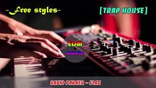 David Parker - Flag - EDM Music 2018