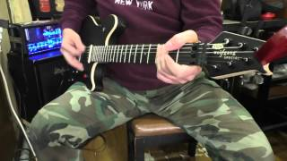 EVH Wolfgang Special Stealth