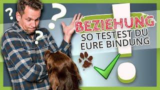 So testest Du die Bindung zwischen dir und deinem Hund