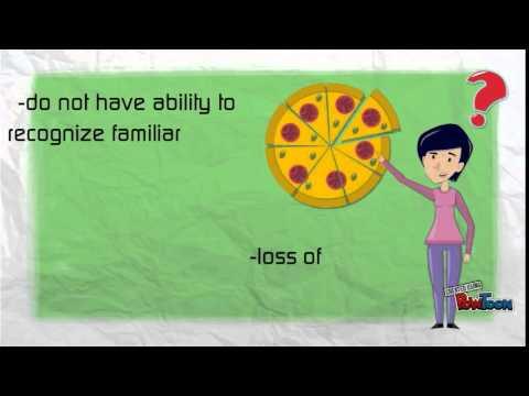 associative visual agnosia