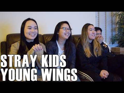 Stray Kids (스트레이 키즈)- Young Wings (Reaction Video)