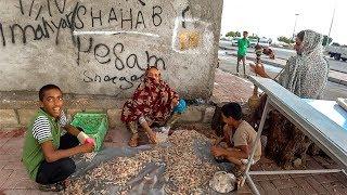 Иран. Самая дешевая страна 2019. Гостеприимный Бендер-Аббас #2
