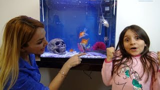 Lina'ya Sürpriz Köpek Balıkları! Eve Akvaryum Kurduk! Çok Sevindi!