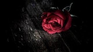La rosa enflorece - Nostra Morte