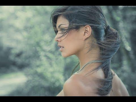 Stardust! (Melachrino Strings) (Lyrics)  Beautiful & Romantic 4K Music Video Album!