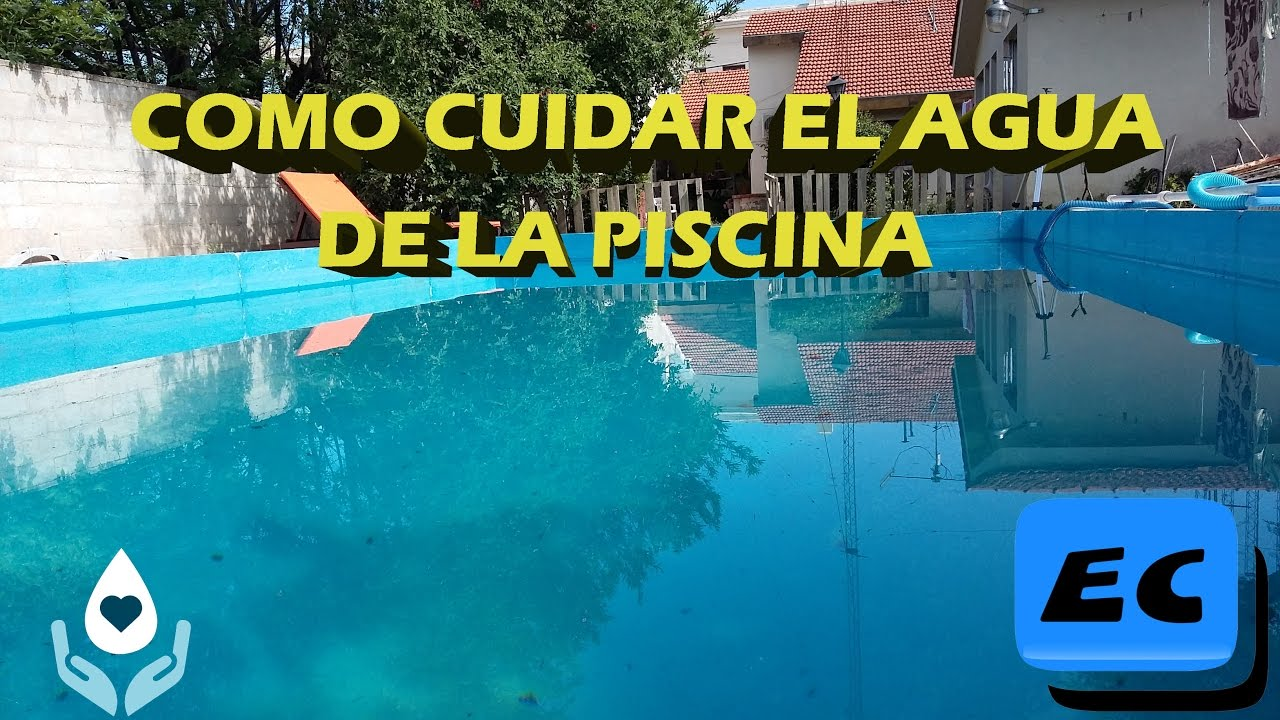 Mantenimiento De Una Piscina How To Take Care Of The Water In The Pool 3 Steps For Maintenance