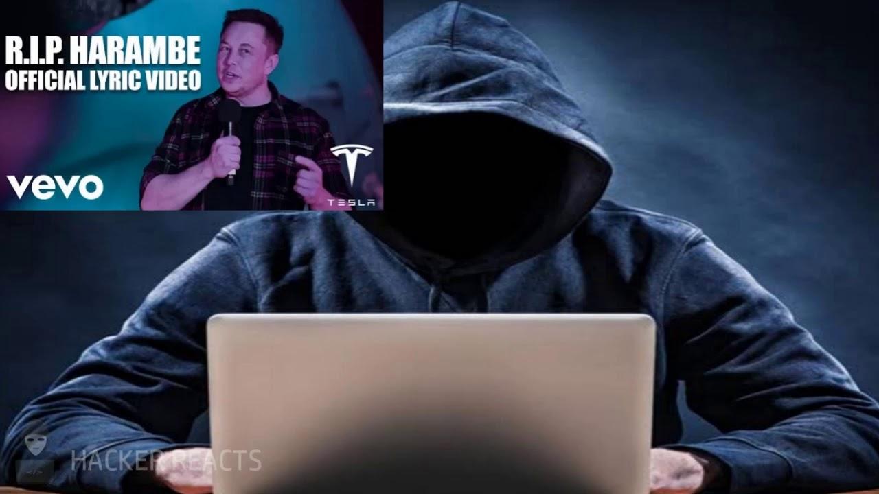 (Hacker Reacts #3) Elon Musk - RIP Harambe (Official Lyric Video) *New* #1