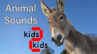Animals names and the sounds they make, Learn english with kids 2 kids