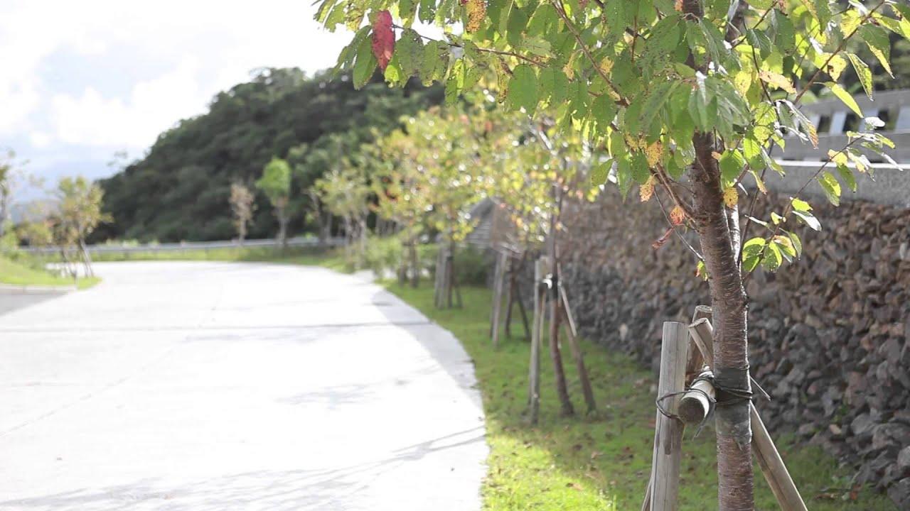 礁溪觀光旅遊景點-櫻花陵園 - YouTube