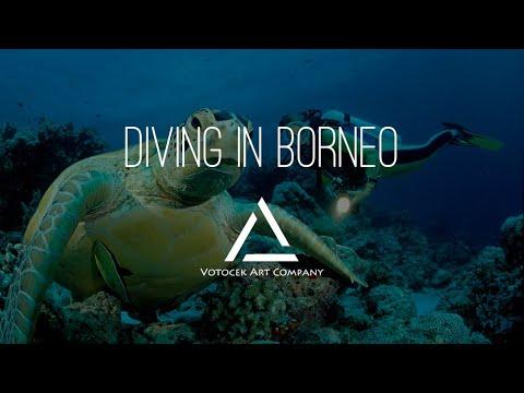 Diving in Borneo - Celebes Sea