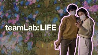 DDP 팀랩라이프(teamLab: LIFE) 전시 후기…