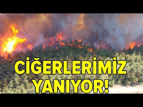Çanakkale Gelibolu'daki Yangından Görüntüler! Bir Köy Boşaltıldı