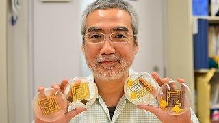 イグ・ノーベル賞に2度輝いた北大電子科学研・中垣俊之教授