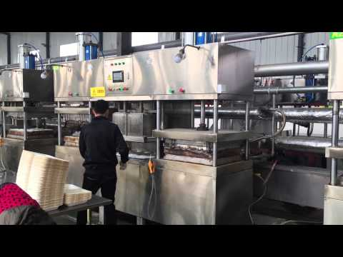Sugarcane bagasse tableware factory in China