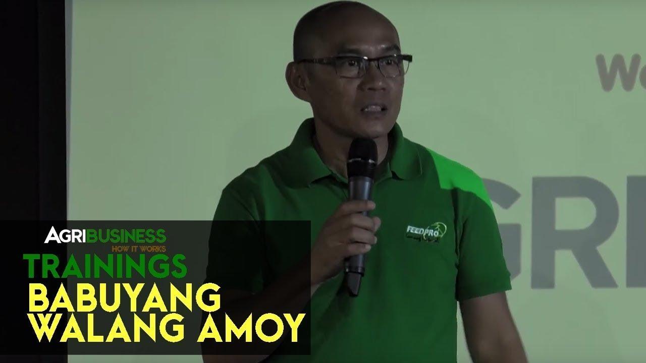 Download Babuyang Walang Amoy: Profitable Innovative Growing System - Natural Hog Raising Seminar