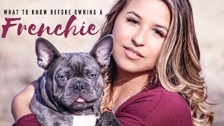 Watch BEFORE owning a French Bulldog || Meet my dog Ghost