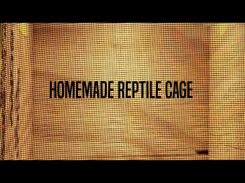 Epic Homemade Reptile Cage