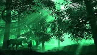 Lost Woods/Saria