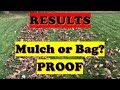 Mulching Leaves Results UPDATE!  Better to Mow or Bag Leaves in Fall or Spring? (LAWN CARE)