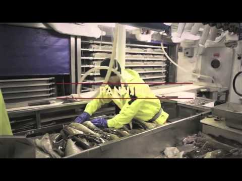 Sustainable Alaska Cod Fishing - The Story Of A Commercial Longliner