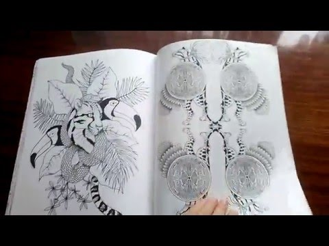 Раскраска-Антистресс ч.1 Фантастические кошки