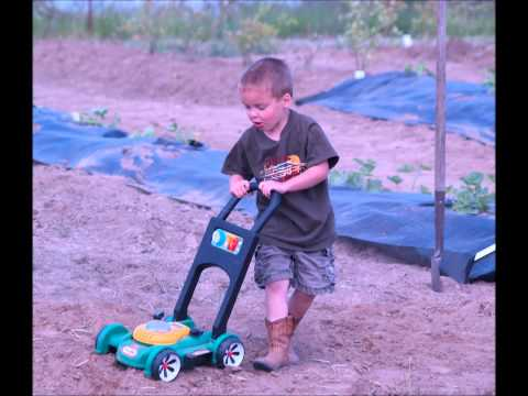 Will and Family... Life on the Farm.wmv