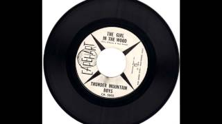 Thunder Mountain Boys - The Girl In The Wood (Frankie Laine Cover)